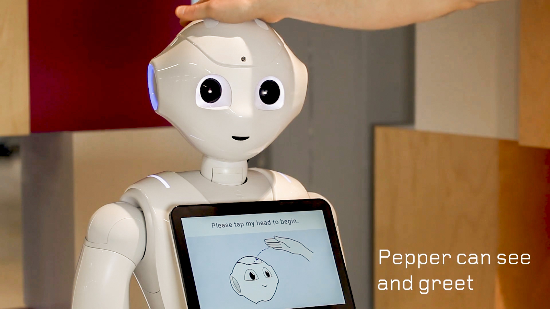 humanoid robotics pepper at croomo